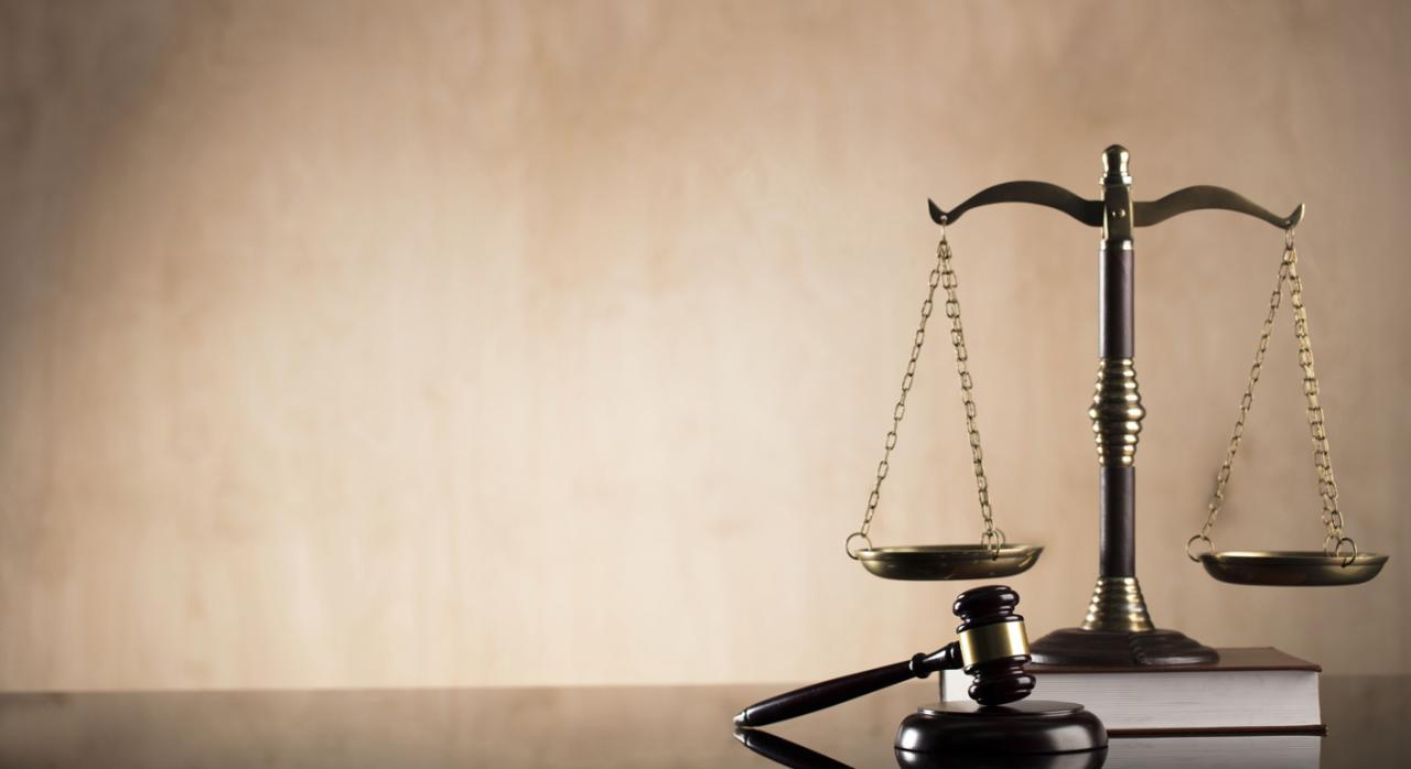 La ministra Delgado expone en el Congreso los siete ejes que guiarán su gestión al frente de Justicia